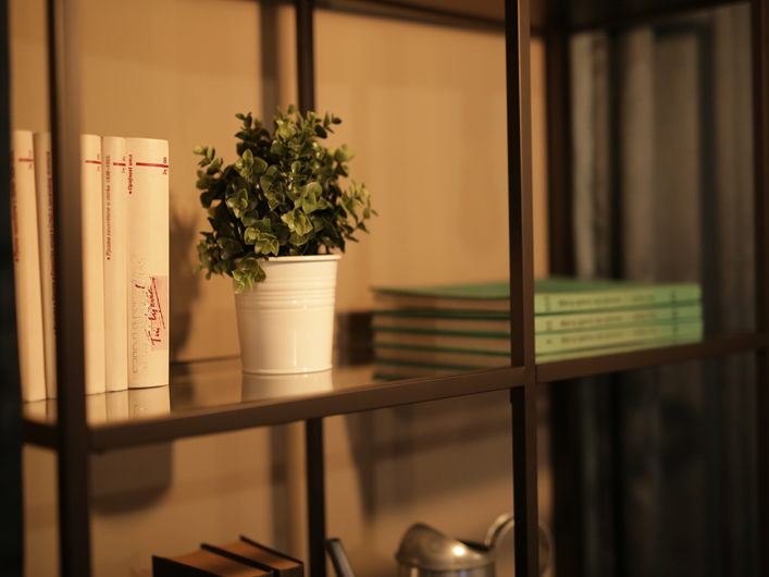 knjige book shelves